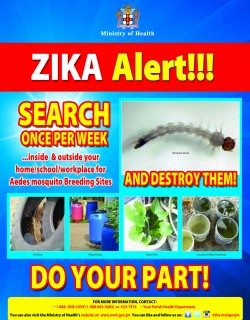 ZIKA Alert SEARCH Poster (4)